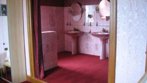 une vue partielle sur la salle de bain